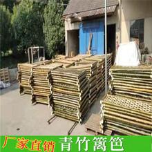 上饶玉山县pvc草坪护栏竹篱笆塑钢护栏紫竹篱笆(中闻资讯)图片
