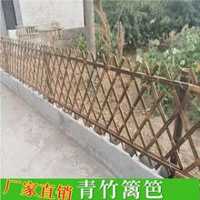 江西鹰潭pvc草坪护栏竹篱笆塑钢护栏竹篱笆围栏竹护栏(中闻资讯)图片