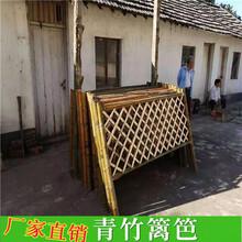 湖南怀化pvc草坪护栏竹篱笆塑钢护栏篱笆网栅栏(中闻资讯)图片