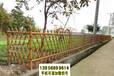 珠晖区竹篱笆竹护栏绿化pvc栅栏波形护栏(中闻资讯)