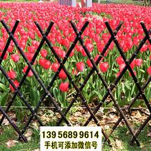 泰州海陵区pvc护栏草坪护栏院墙栏杆图片