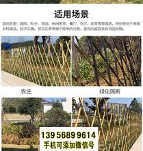邵阳双清竹篱笆pvc护栏竹栅栏围栏花池围挡(中闻资讯)图片