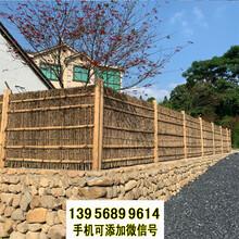 甘南竹篱笆pvc护栏小区围栏pvc绿化栅栏(中闻资讯)图片