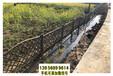 津市竹篱笆竹护栏围栏绿化铁艺栅栏塑料篱笆(中闻资讯)