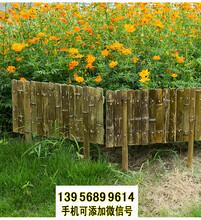 岳阳竹篱笆竹护栏围栏木栏栅草坪护栏市政隔离围栏(中闻资讯)图片