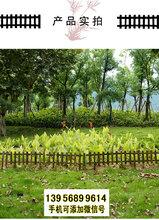 亭湖竹围栏碳化木护栏竹篱笆pvc护栏塑料篱笆图片