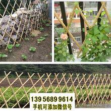 上饶鄱阳pvc护栏PVC护栏竹篱笆草坪护栏护栏草坪图片