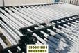 三明清流县竹篱笆pvc护栏塑钢栏杆花池护栏(中闻资讯)