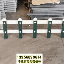 漳州长泰pvc护栏庭院围栏pvc塑钢栅栏图片