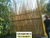 武夷山竹片栅栏木围栏竹篱笆竹护栏竹篱笆栅栏围栏