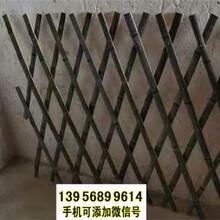 绍兴竹篱笆竹护栏小院篱笆草坪护栏塑料栅栏(中闻资讯)图片