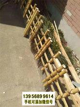 滁州竹篱笆竹护栏竹篱笆厂家草坪护栏热镀锌电焊网片(中闻资讯)图片