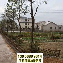 沧州运河区竹篱笆竹护栏木栅栏花园围栏(中闻资讯)图片