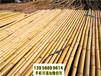 岳麓区竹篱笆竹护栏庭院护栏施工围挡(中闻资讯)