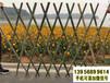 平果竹圍欄竹護欄竹籬笆pvc護欄柳籬笆