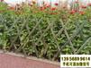 惠水竹圍欄仿竹節護欄竹籬笆pvc護欄水泥仿木紋欄桿