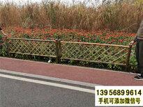 甘南竹籬笆pvc護欄塑鋼欄桿pvc綠化護欄(中聞資訊)圖片4