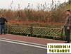 賓陽竹圍欄農家小院防腐竹籬笆pvc護欄道路護欄