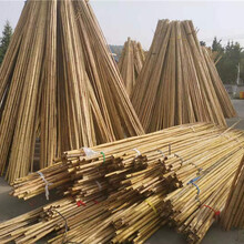 衢州常山pvc护栏塑钢pvc护栏围栏家院栅栏图片