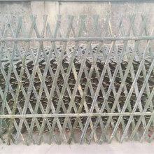 青阳竹篱笆竹护栏学校医院护栏竹子栅栏伸缩定制(中闻资讯)图片