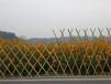 陵水竹圍欄插地圍欄竹籬笆pvc護欄竹籬笆圍墻