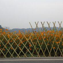 石家庄栾城竹篱笆竹护栏草坪护栏绿化护栏百度爱采购图片