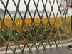 昭平竹圍欄竹籬笆廠家竹籬笆pvc護欄小籬笆