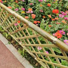 南京六合区pvc护栏绿化围栏花池栅栏图片