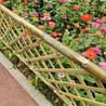 竹篱笆  竹护栏