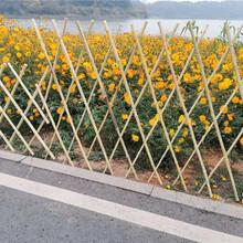 宁波江东区pvc护栏栅栏围栏别墅护栏图片