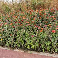 荆门竹篱笆竹护栏室外花园草坪护栏栏工地围挡(中闻资讯)图片