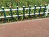 三明竹片栅栏伸缩篱笆竹篱笆竹护栏紫竹篱笆