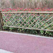 岳阳竹篱笆竹护栏花园围栏草坪护栏学校防攀爬(中闻资讯)图片