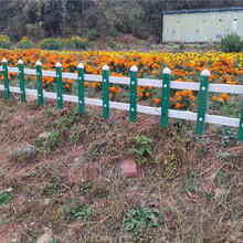 漳州漳浦pvc护栏pvc护栏pvc草坪栅栏图片