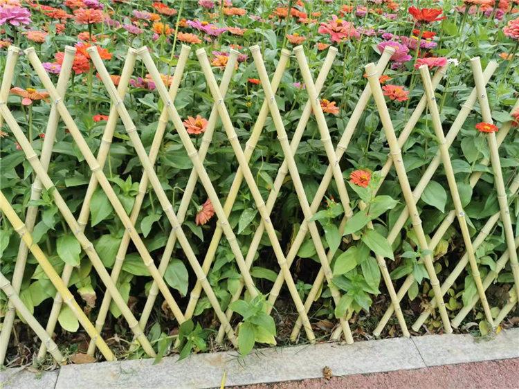 鷹潭月湖區竹籬笆竹子隔斷竹護欄籬笆圍欄