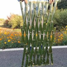 衡阳石鼓区pvc护栏绿化栏杆围栏竹篱笆草坪护栏围栏栅栏图片