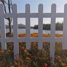 榆林清涧竹片栅栏草坪护栏竹篱笆草坪护栏竹栅栏围栏图片