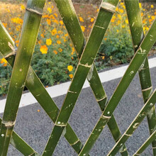 百色竹篱笆pvc护栏绿化栅栏pvc小区围墙栅栏(中闻资讯)图片