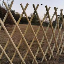 亳州竹篱笆竹护栏草坪围栏草坪护栏丝网护栏(中闻资讯)图片