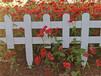 興賓竹圍欄竹子籬笆墻竹籬笆pvc護欄木樁圍欄