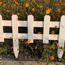 宜春竹篱笆竹护栏伸缩竹拉网草坪护栏热镀锌(中闻资讯)图片