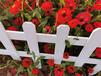 双牌竹篱笆竹护栏隔断围墙铁艺栏杆(中闻资讯)