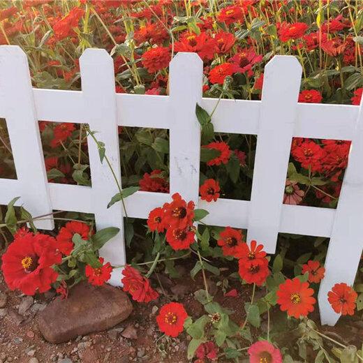 漳州漳浦pvc護欄護欄塑鋼護欄花壇圍欄