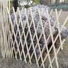 滁州竹篱笆竹护栏护栏花园草坪护栏铁网格网钢丝(中闻资讯)