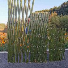 常州新北区竹篱笆竹篱笆竹护栏竹笆图片
