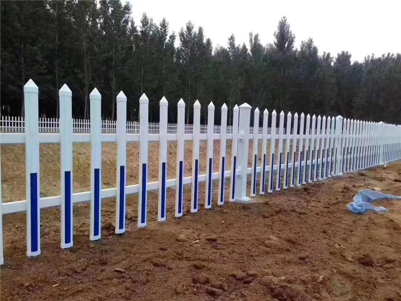 龍華區竹籬笆花園竹子竿竹片竹子籬笆花池白色塑料南通海門