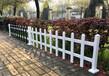 壺關竹籬笆庭院裝飾花園圍欄竹子籬笆草坪護欄柵欄恩施咸豐