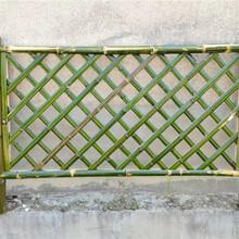 云縣竹籬笆仿竹籬笆竹子籬笆花園籬笆山西忻州圖片