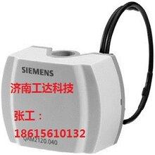 QAM2112.040温度传感器图片