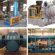 莆田RTSR65曝气罗茨风机水处理风机优质服务图片